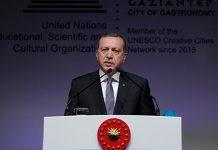 52-turki-berhak-lakukan-operasi-militer-di-suriah
