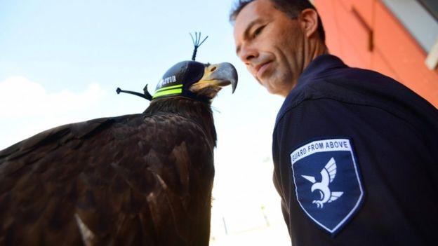 78-elang-anti-drone-kepolisian-belanda