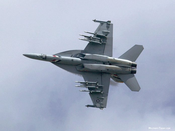Ilustrasi F/A-18E/F Super Hornet AL AS.